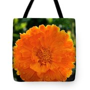Pot Marigold  Tote Bag