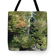 Potted Tree Tote Bag