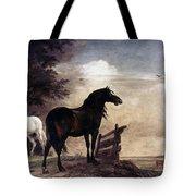 Potter: Horses, 1649 Tote Bag