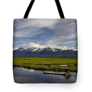 Potters Marsh Summer's Eve Tote Bag