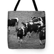 Pourquoi Pas Les Vache Tote Bag