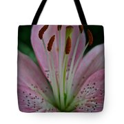 Powdery Pink Tote Bag