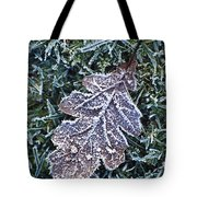 Powerscourt Estate, County Wicklow Tote Bag