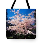 Powerscourt Gardens, Powerscourt Tote Bag