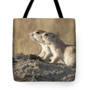 Prairie Dog Pair Grasslands Np Tote Bag