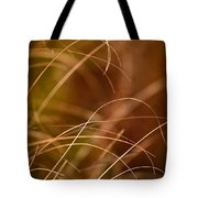 Prairie Grasses Number 4 Tote Bag