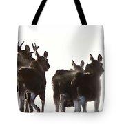 Prairie Moose Saskatchewan Tote Bag