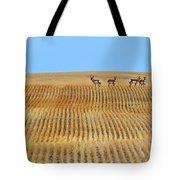 Prairie Pronghorns Tote Bag