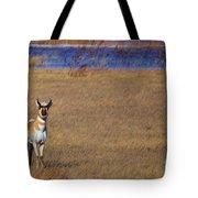 Prairie Sentinel Tote Bag