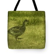 Prarie Chicken At Battle Of Little Bighorn Site Tote Bag
