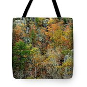 Prarie Hollow Gorge In Autumn Tote Bag