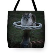 Pray For Rain Tote Bag