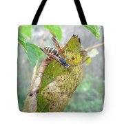 Predatory Wasp Hunts Spider Tote Bag