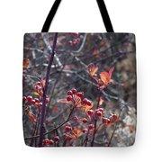 Presque Isle Fall 2009 Tote Bag
