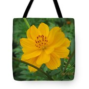 Pretty And Lovely In Yellow Tote Bag