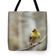 Pretty Finch Tote Bag