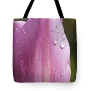 Pretty In Pink 4 Tote Bag