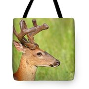 Pretty In Velvet Tote Bag