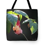 Pretty Ladies In Frilly Gowns II Tote Bag