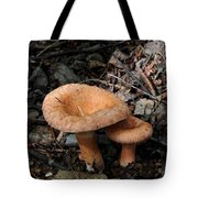 Pretty Mushrooms Tote Bag