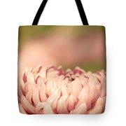 Pretty Pastels Tote Bag