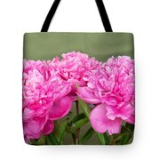 Pretty Peonies Tote Bag