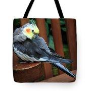 Pretty Polly Tote Bag