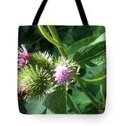 Pretty Prickles Tote Bag
