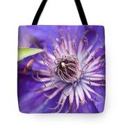 Pretty Purple Clematis Tote Bag