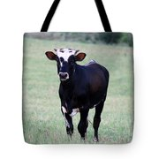 Pretty Young Thing Tote Bag