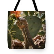 Prickly Lunch  Tote Bag
