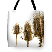 Prickly Teasels On White Tote Bag