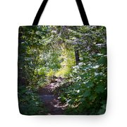 Priest Lake Trail Series IIi - Trail Shadows Tote Bag