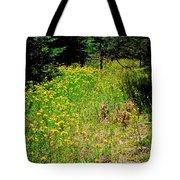Priest Lake Trail Series Iv - Small Meadow Tote Bag