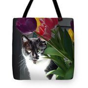 Princess The Cat And Tulips Tote Bag