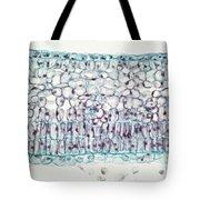 Privet Leaf Palisade Cells Tote Bag