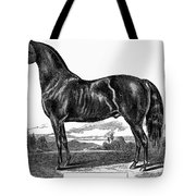 Prize Horse, 1857 Tote Bag