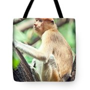 Proboscis Monkey Tote Bag