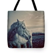 Profile Of A Horse Tote Bag by Toni Hopper