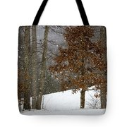 Promises To Keep Tote Bag