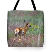 Pronghorn Fawn Tote Bag