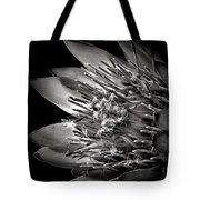 Protea In Black And White Tote Bag