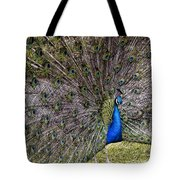 Proud Peacock At Leeds Castle Tote Bag