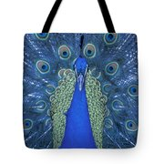 Proud Peacock Tote Bag