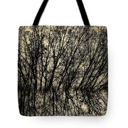 Pseudo Reflection  Tote Bag