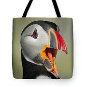 Puffin Portrait Tote Bag