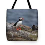Puffin With Sand Eels Tote Bag