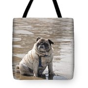 Pug Can't Be Budged Tote Bag