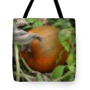 Pumpkin On The Vine Tote Bag