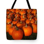 Pumpkin Pie Anyone Tote Bag